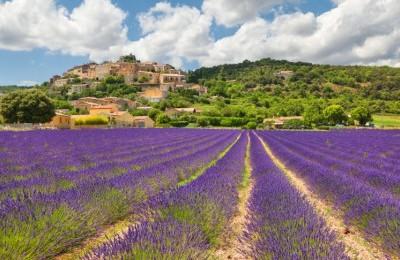 FESTA DELLA LAVANDA (Assisi)